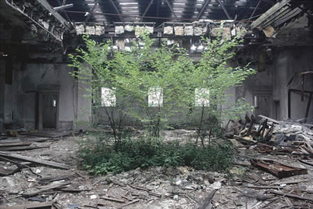 Detroit building an economy on ruins